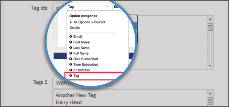 How to Use Tags to Automate Contact Segmentation